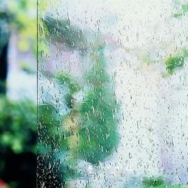 L Clear 1xx medium seedy