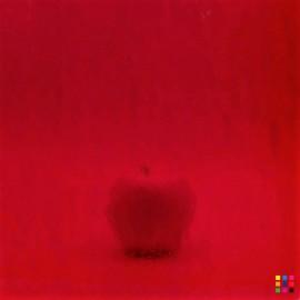 W Double Rolled 18-L rojo...